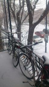 Encore de la neige...